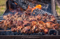 Shish kebab on skewers on the fire Stock Photography