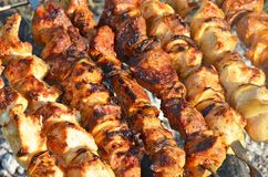 Shish kebab. On skewers and hot coals Royalty Free Stock Image