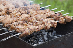 Shish kebab on skewers in the process of cooking over the coals Royalty Free Stock Photos