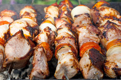 Shish kebab on skewers Royalty Free Stock Photo