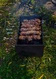 Shish kebab on a stick Stock Photos