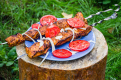 Shish kebab with tomatoes Royalty Free Stock Photography