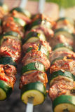 Shish kebab with vegs and mix of spices on bbq Royalty Free Stock Photos