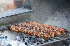 The shish kebab which is fried on coals Stock Photos