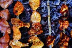 Shish Kebab wieprzowina i kurczak z mieszanki pikantność Obraz Stock