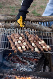 shish kebabs Стоковое фото RF
