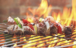 Shish kebabs on grill Stock Photo