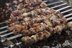 The shish kebabs prepared on a brazier. The pork shish kebabs prepared on a brazier for a holiday stock image