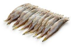 Shishamo, éperlan de Japonais avec des oeufs de poisson Photos stock