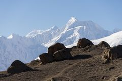 Shispare peak in Karakoram mountain range in Hunza valley, Gilgi Royalty Free Stock Image