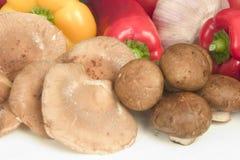 Shitake and brown cap mushrooms Stock Images