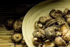 Shitake mushroom Stock Photos