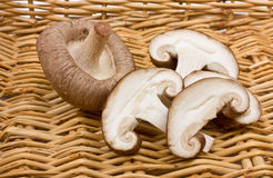 Shitake Mushrooms. Whole and sliced raw Shitake Mushrooms against wicker basket Stock Photography