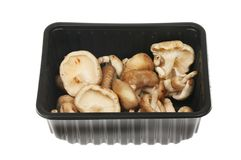 Shitake mushrooms in a carton. Shitake mushrooms in a plastic carton isolated against white royalty free stock image