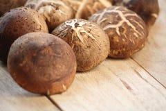 Shitake mushrooms on wood Royalty Free Stock Images
