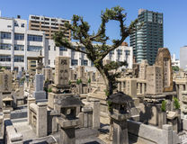 Shitennoji kyrkogård Arkivfoto