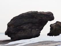 Shitting Bear Rock Royalty Free Stock Photo