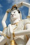 Shiva Royalty Free Stock Photography