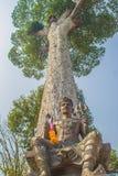 Shiva staty under det stora skället för Dipterocarpus alatusträd som ser upp Dipterocarpus alatus också som är bekant som 'Yang N royaltyfri foto