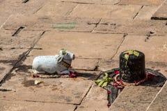 Shivalinga di Nandiand sulla banca dei banaras India di ganga Immagini Stock Libere da Diritti