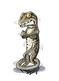 Shiver Lizard cold Royalty Free Stock Photography