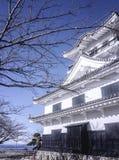 SHIZUOKA JAPAN - FEBRUARI 11, 2018: Sikt av traditionell japan fotografering för bildbyråer