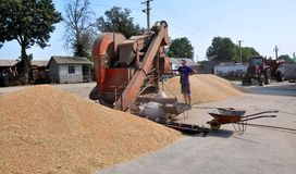 On the current mobile grain cleaning machine Stock Image