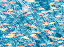 Shoal of fish on blue water Stock Photography