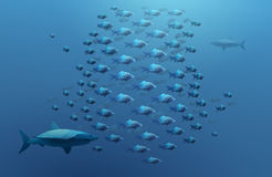 Shoal of fish and sharks Royalty Free Stock Photo