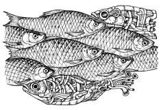 Shoal of fish. Steam-punk and reall - drawn vector illustration, isolated on white, stylized engraving Stock Photos