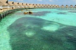 Shoal of Small Fish around Luxury Water Villas, Maldives Royalty Free Stock Photo