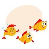 Shoal of three funny golden, yellow fish characters speeding somewhere. Shoal of three smiling funny golden, yellow fish characters speeding somewhere, cartoon Stock Photography