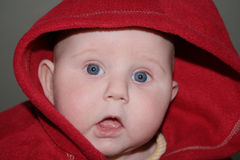Shocked Baby. A cute baby wrapped in a red towel with a shocked expression on its face royalty free stock photos