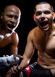Shocked Boxer and Trainer Royalty Free Stock Image