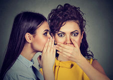 Shocked woman listening gossip a secret in the ear Royalty Free Stock Image