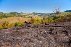 Shocking contrast between the beautiful Tuscan hills in the background and foreground burnt by fire Stock Photo