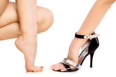 Shoe Royalty Free Stock Photography