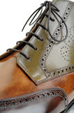 Shoe. Classical green-brown leather shoe Stock Photos