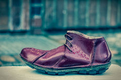 Shoe Royalty Free Stock Images