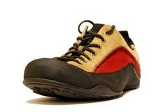 Shoe. Fashion shoe Royalty Free Stock Photo