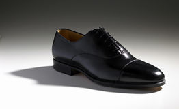 Free Shoe Royalty Free Stock Photography - 8590107
