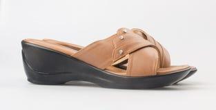 Shoe or female fashion sandal on background. Stock Photography