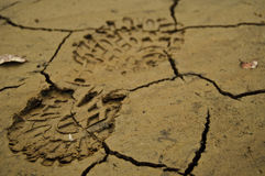Shoe footprint in mud Royalty Free Stock Photo