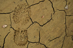 Shoe footprint in mud Royalty Free Stock Image