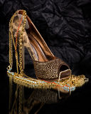 Shoe with golden jewelry Royalty Free Stock Photography