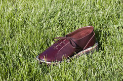 Shoe in the grass - RAW format Royalty Free Stock Photography