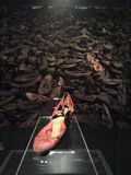 Shoe of jew. This is a shoe of ab exhibition of auschwitz in wich we can see a shoe of a jew miss uknown. auschwitz not far not a long ago Stock Images