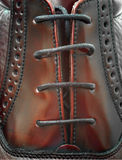 Shoe Macro. Leather brogue, shiny Stock Photos