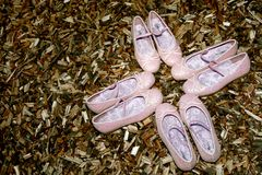 Shoe Pink Stock Photography