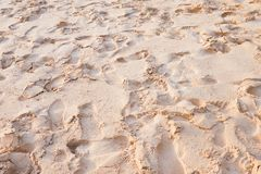 Shoe print at beach Royalty Free Stock Image